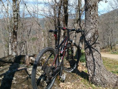 Mountain bike 6
