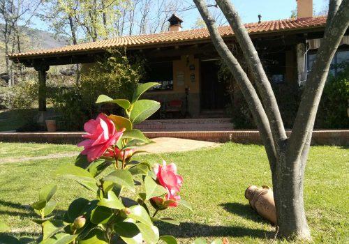 ¡Ya llegó la primavera! - Hotel Rural El Camino